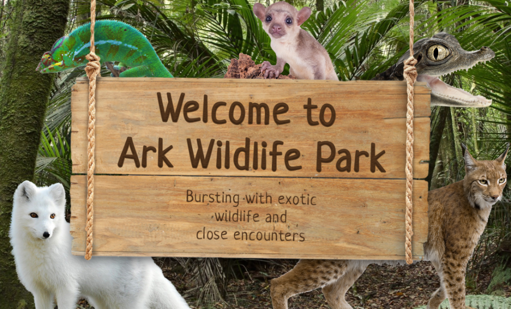 Customer links Ark Park